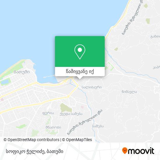 სოფიკო ჭელიძე რუკა