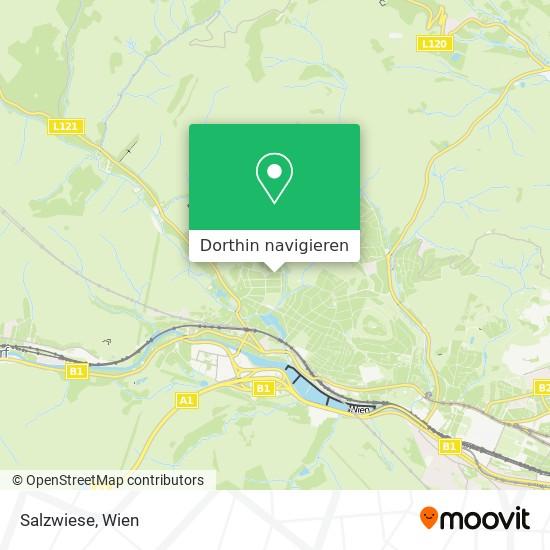 Salzwiese Karte
