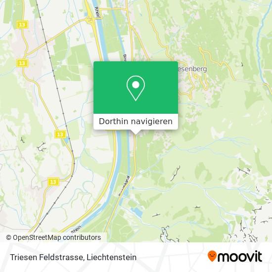 Triesen Feldstrasse Karte