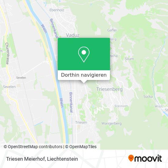 Triesen Meierhof Karte