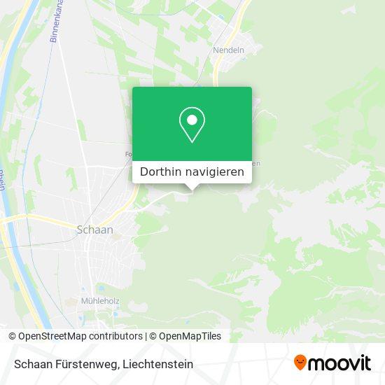 Schaan Fürstenweg Karte