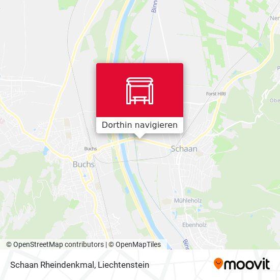 Schaan Rheindenkmal Karte