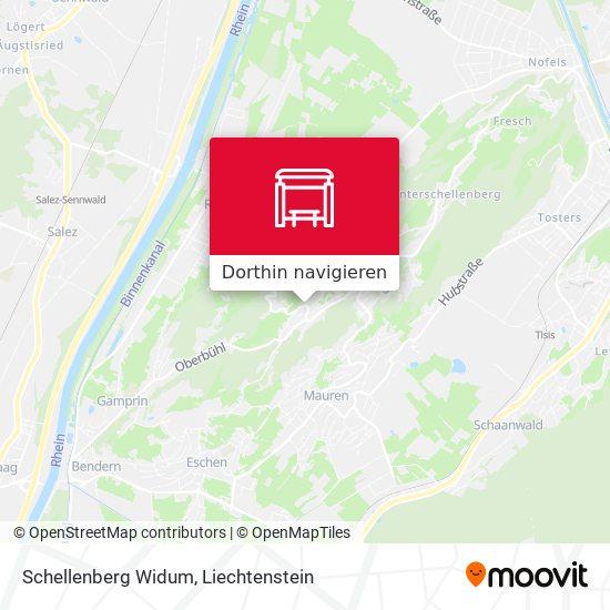Schellenberg Widum Karte