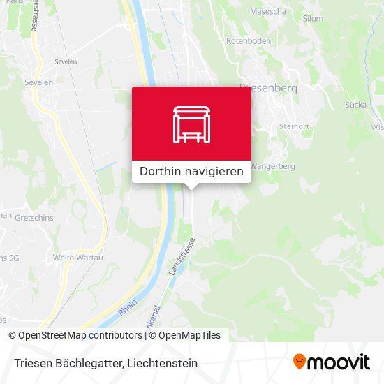Triesen Bächlegatter Karte