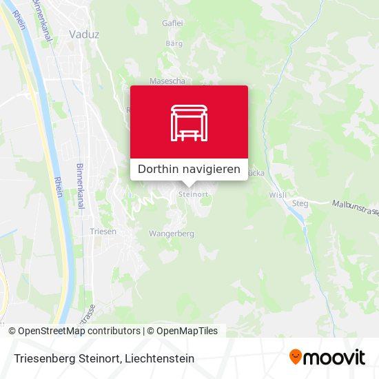 Triesenberg Steinort Karte