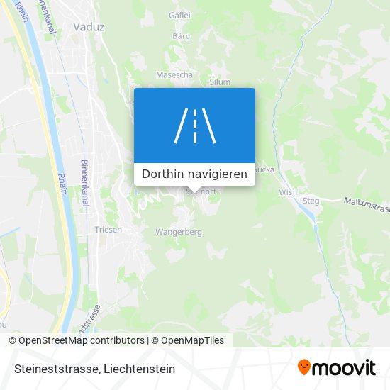 Steineststrasse Karte