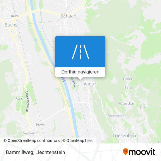 Bammiliweg Karte