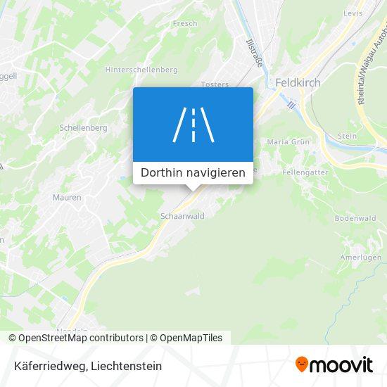 Käferriedweg Karte