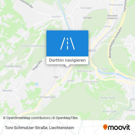 Toni-Schmutzer-Straße Karte