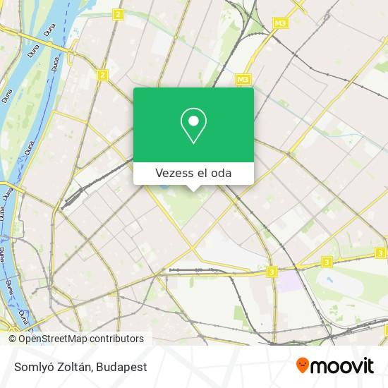 Somlyó Zoltán Költő térkép