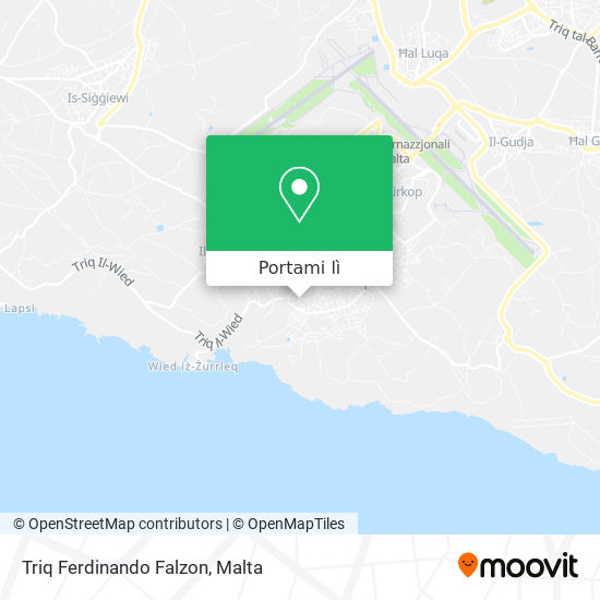 Mappa Triq Ferdinando Falzon