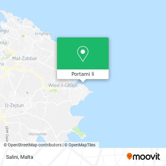 Mappa Salini