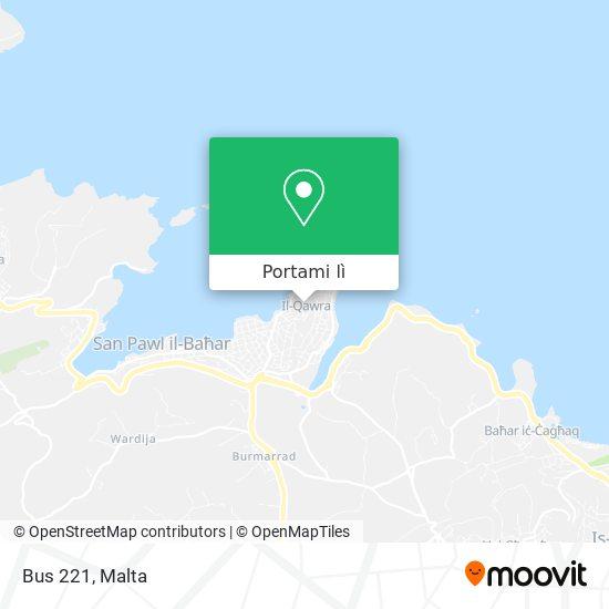 Mappa Bus 221