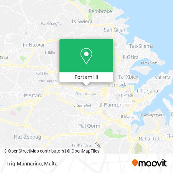 Mappa Triq Mannarino