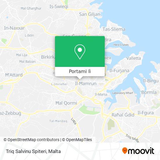Mappa Triq Salvinu Spiteri