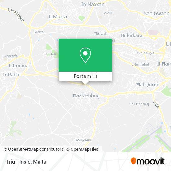 Mappa Triq l-Insig