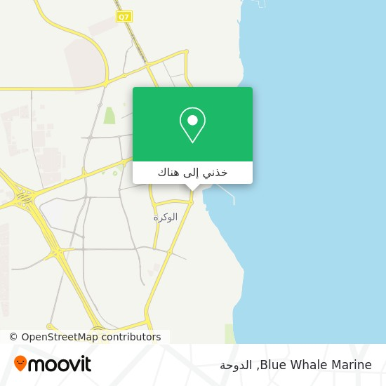 خريطة Blue Whale Marine