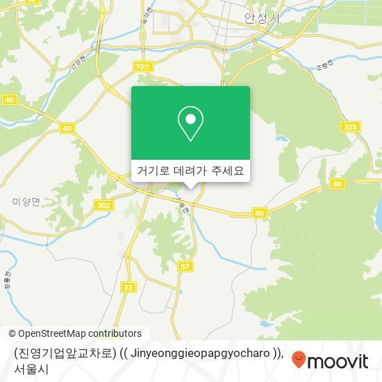 (진영기업앞교차로) (( Jinyeonggieopapgyocharo )) 지도