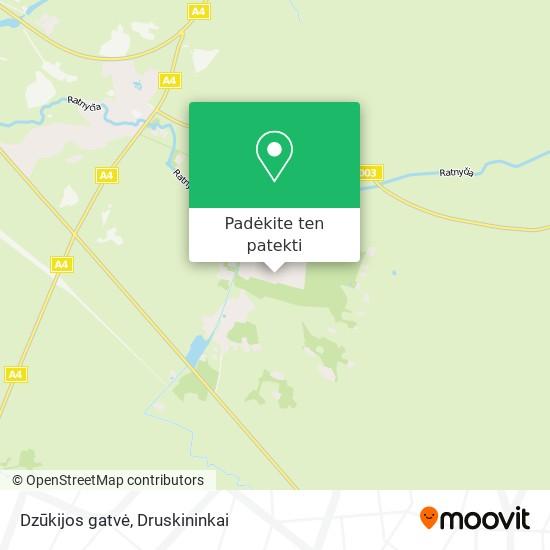 Dzūkijos gatvė žemėlapis