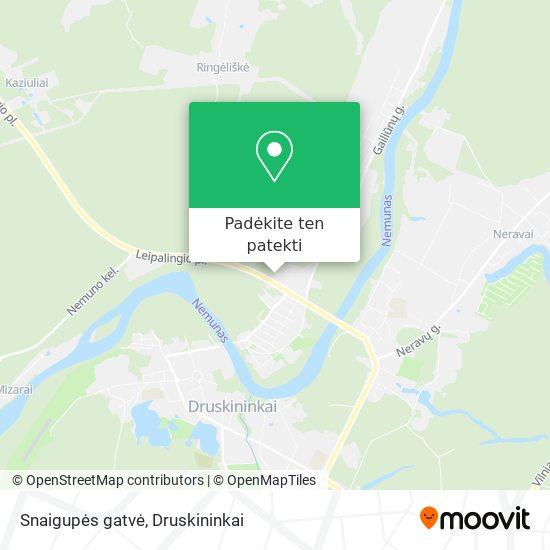 Snaigupės gatvė žemėlapis