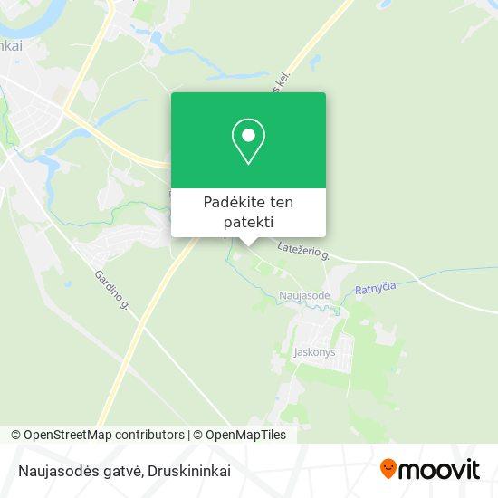Naujasodės gatvė žemėlapis